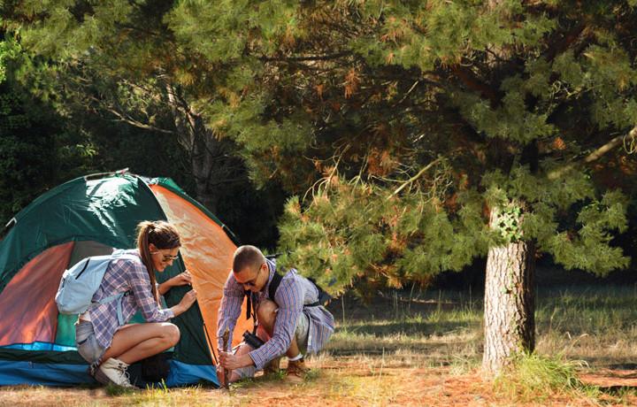 Location Camping Ile d'Oléron